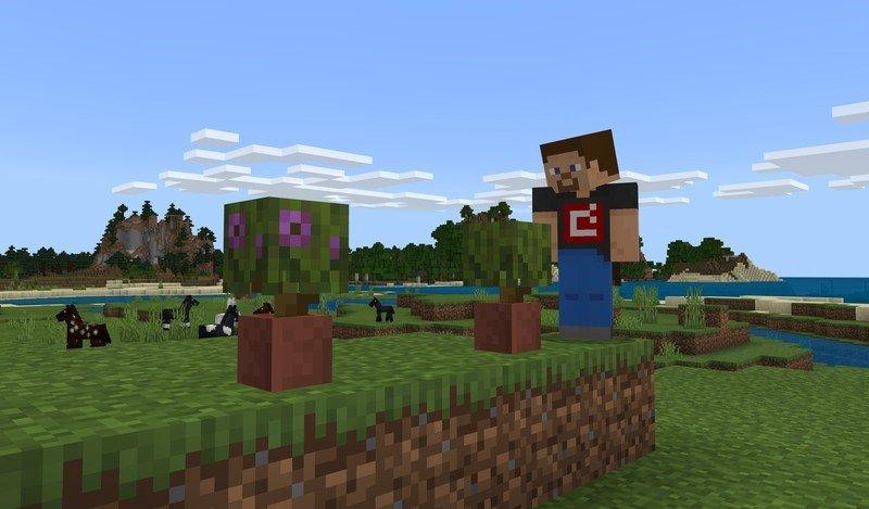 Imagen de actualización de Minecraft Caves and Cliffs